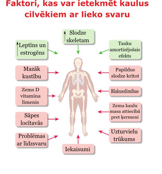 kauli_liekais_svars