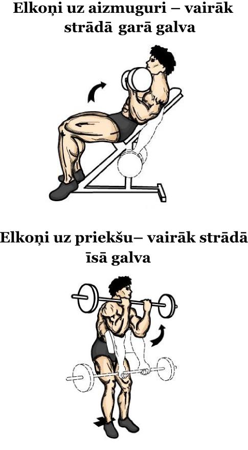 Bicepsa_galvu_vingrinajums