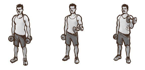biceps_hantele_griesana