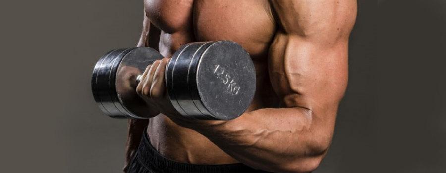 celsana_hanteles_bicepsu