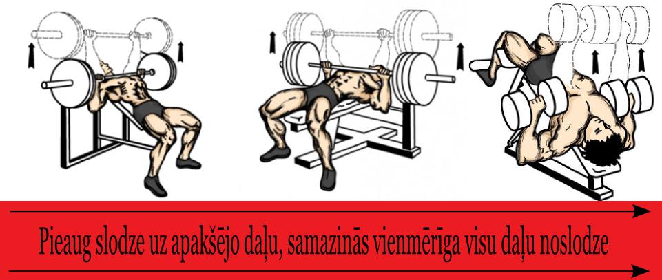 krusu_muskulu_noslodze