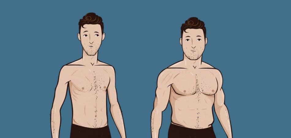 atšķirības muskuļu pieaugumā